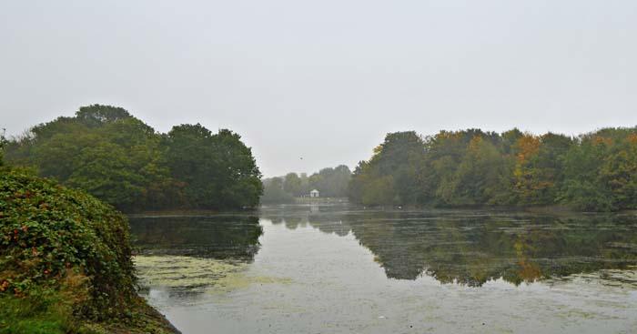 The Heronry Pond, looking east.