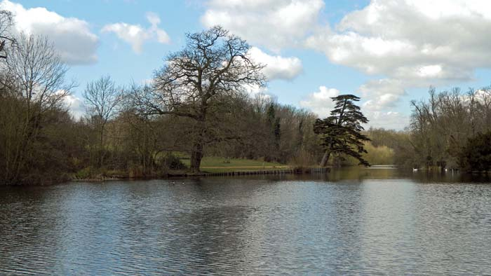 "The Ornamental Water seen from the western end of the Straight Canal, looking toward the ""Map Tree"" and the Long Walk."