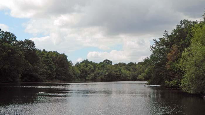 The Perch Pond.