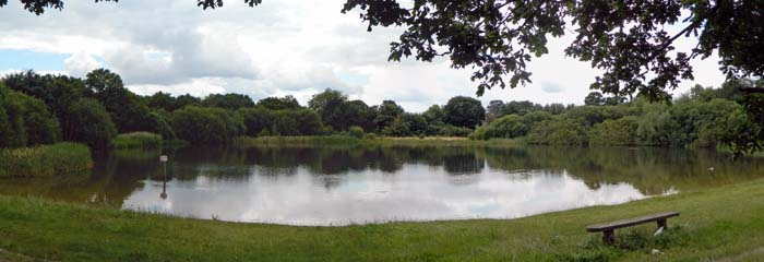 The Shoulder of Mutton Pond from the north.