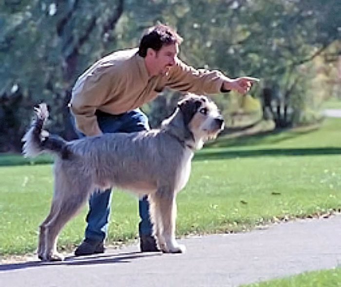 Man playing with dog in the park