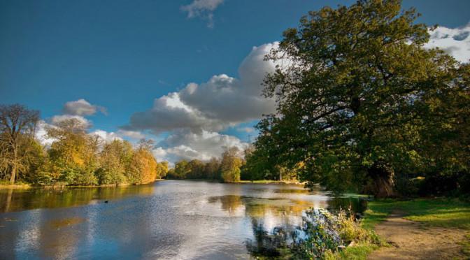 The Wanstead Park Lakes