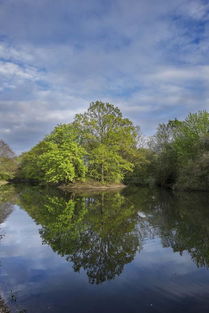 """Buxton Island reflections"" © Stuart Moore"