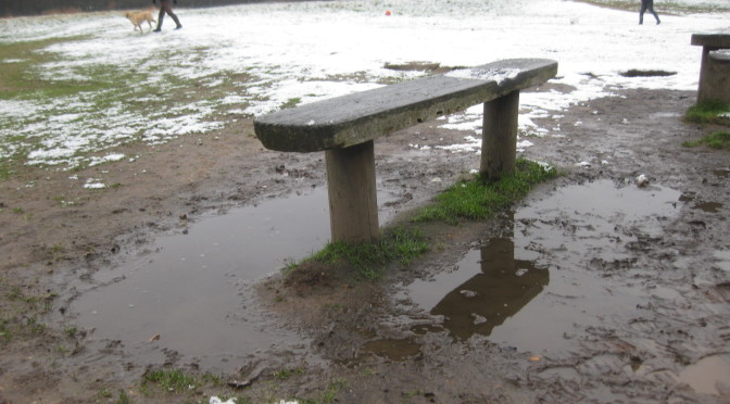 Renewal of Benches by the Tea Hut in Wanstead Park: Your Support Needed