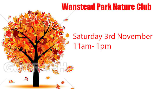 Wanstead Park Nature Club